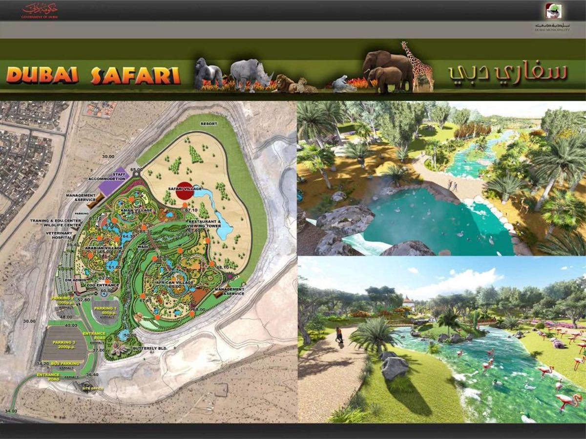 dubai safari park 1
