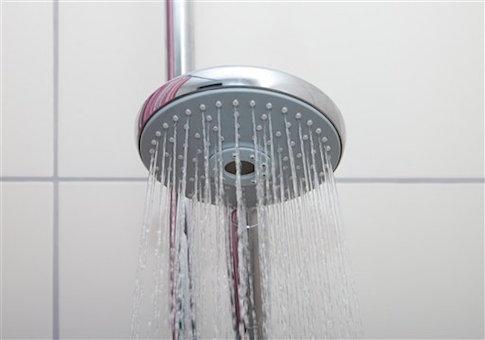 Shower head (Image Source via AP Images)