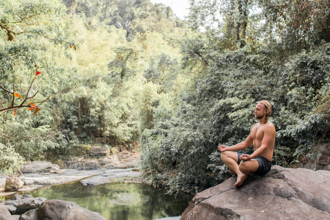 the guy is meditating on a stone in the forest
