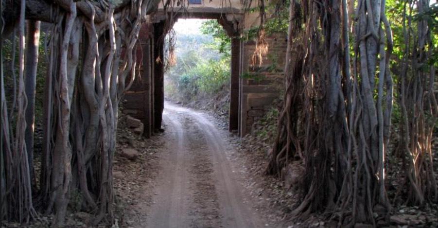 Ranthambore National Park Gate