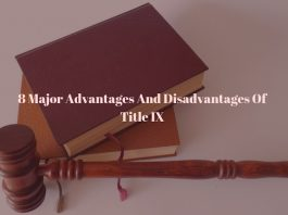 8 Major Advantages And Disadvantages Of Title IX