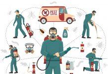 4 Best Advantages Of Choosing Pest Exterminator