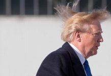 donald trump hair wig TOUPET