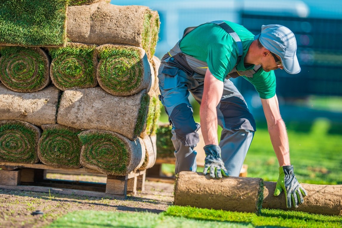Find a Landscaper: 5 Key Things to Look for in a Landscaping Company