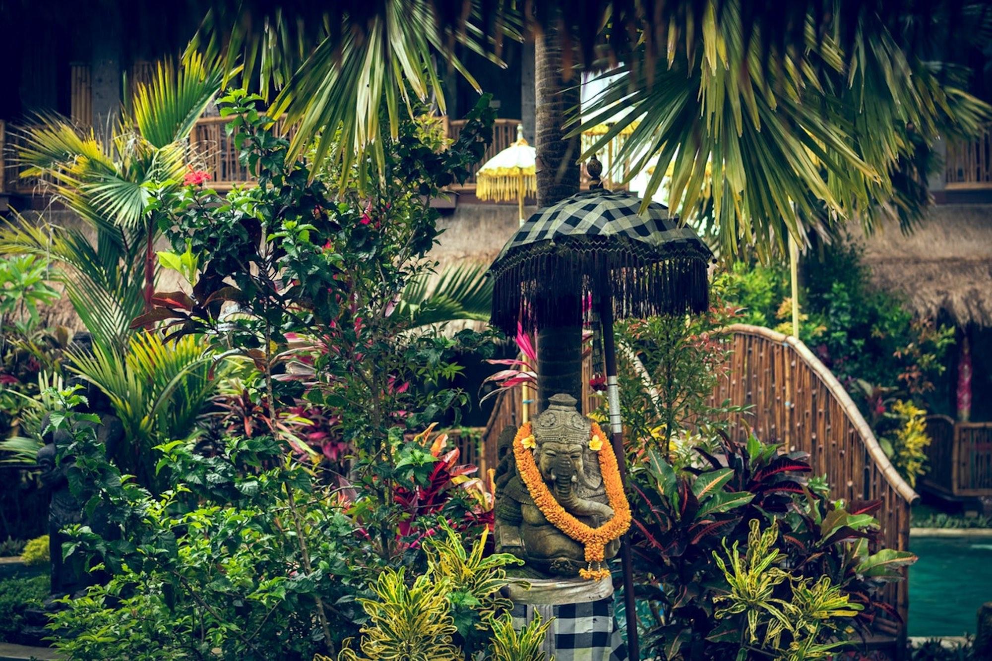 Hut Garden