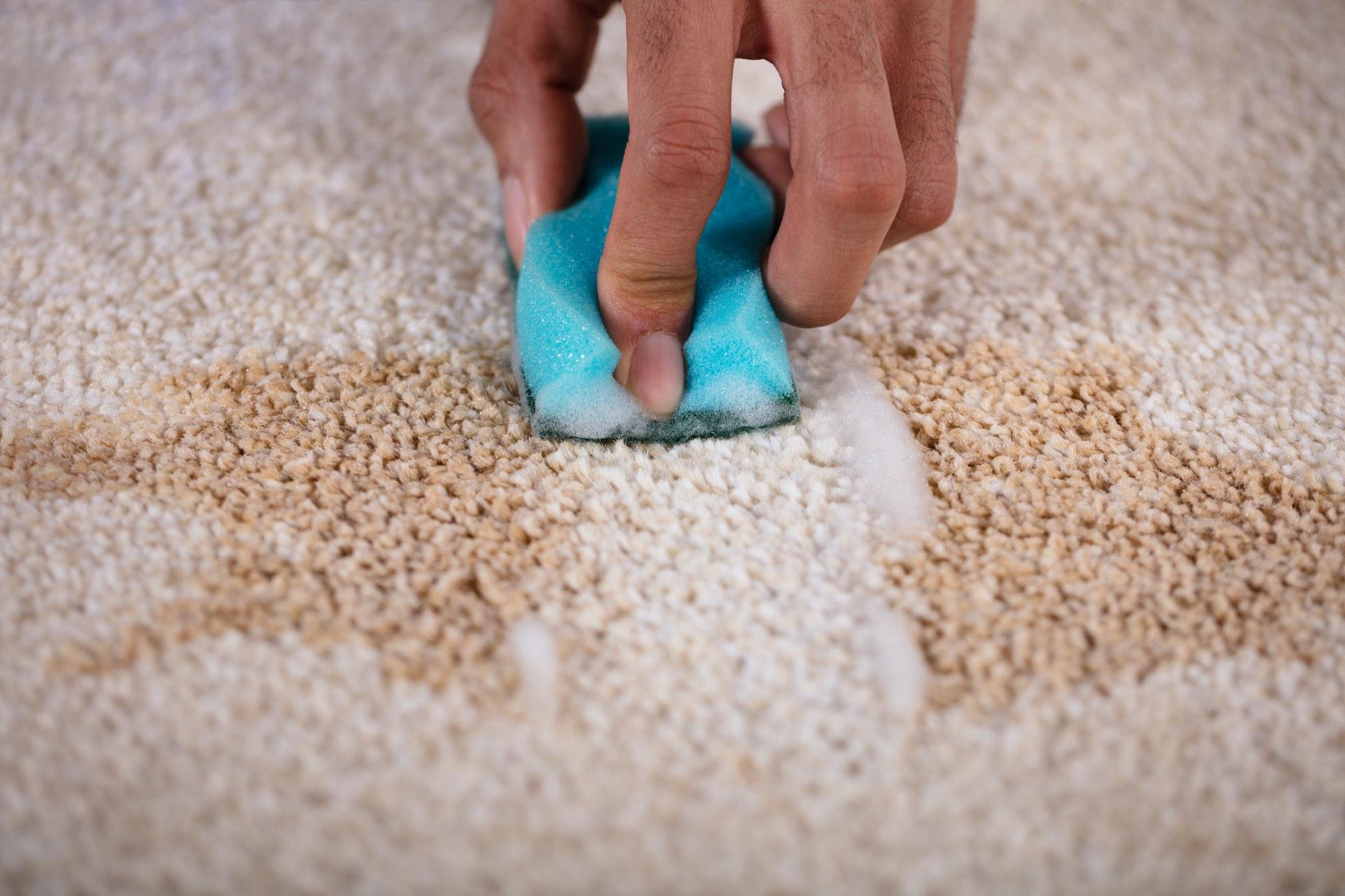 4 conseils clés sur la façon de nettoyer les taches de tapis