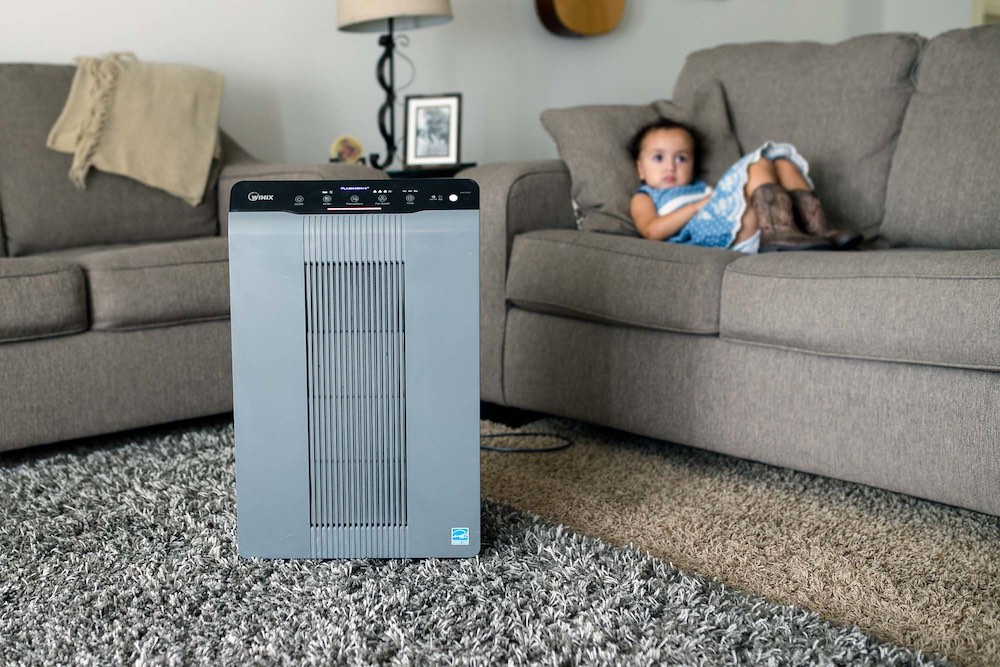 How Effective Is Air Purifier for Mould Removal?