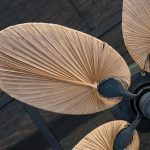 Tropical Ceiling Fans- What to Know Before Buying