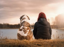 5 Benefits of Adopting a Pet Even With a Busy Lifestyle
