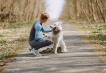 5 Reasons Dogs Make Our Lives Better