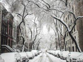 Winter, Drive