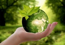 Green Planet Nature